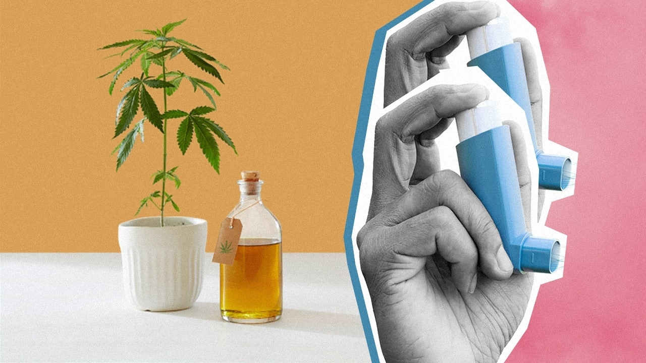 Can CBD help with Asthma?